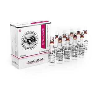 Magnum Test-E 300 - comprar Enantato de testosterona en la tienda online | Precio